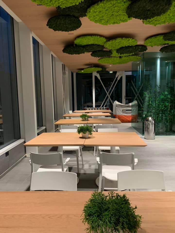 tavolini sedie e verde